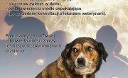 Apel Towarzystwa Opieki nad Zwierzętami w Polsce