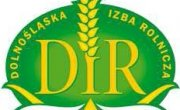 logo DIR